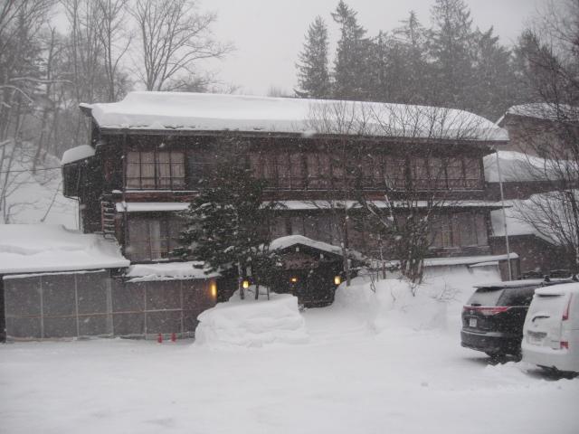 白骨は毎日雪です!