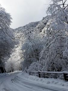 雪のトンネル♪
