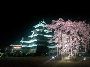 今だけ限定!松本城のライトアップ